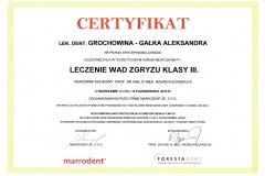 Dyplom Ola 008