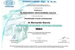 certyfikat13
